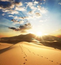 desert_sun