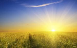 sunshine-wallpaper_1920x1200