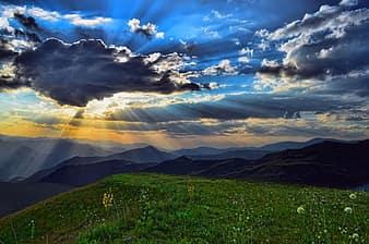 storm-peace-grassland